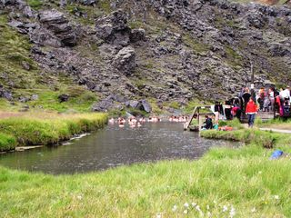 Islande 442