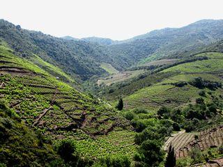 Roussillon 033