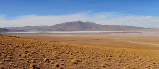 Chili 223 - Bolivie laguna colorada