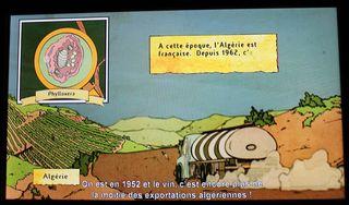Vidéo cargos pinardiers algériens 3