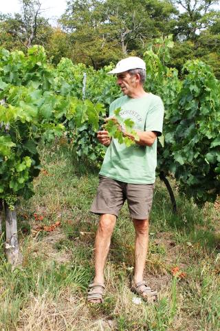 Mine de vin vigneron