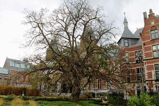 Blog Amsterdam 002