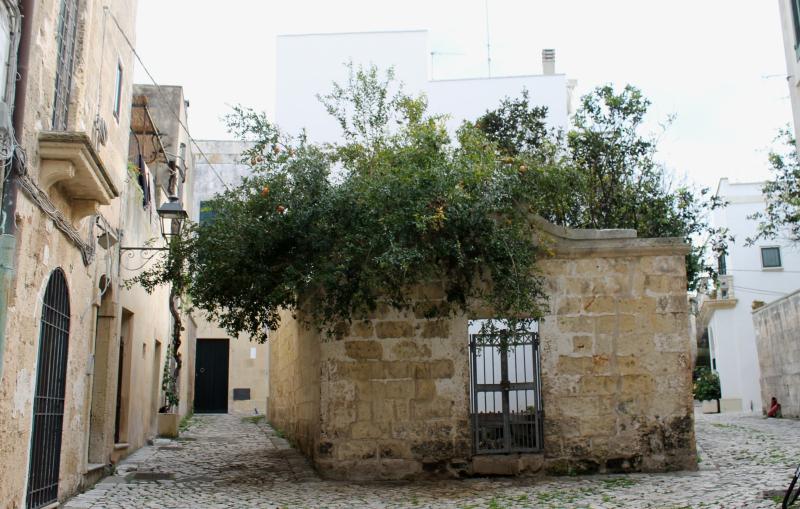 Lecce 055